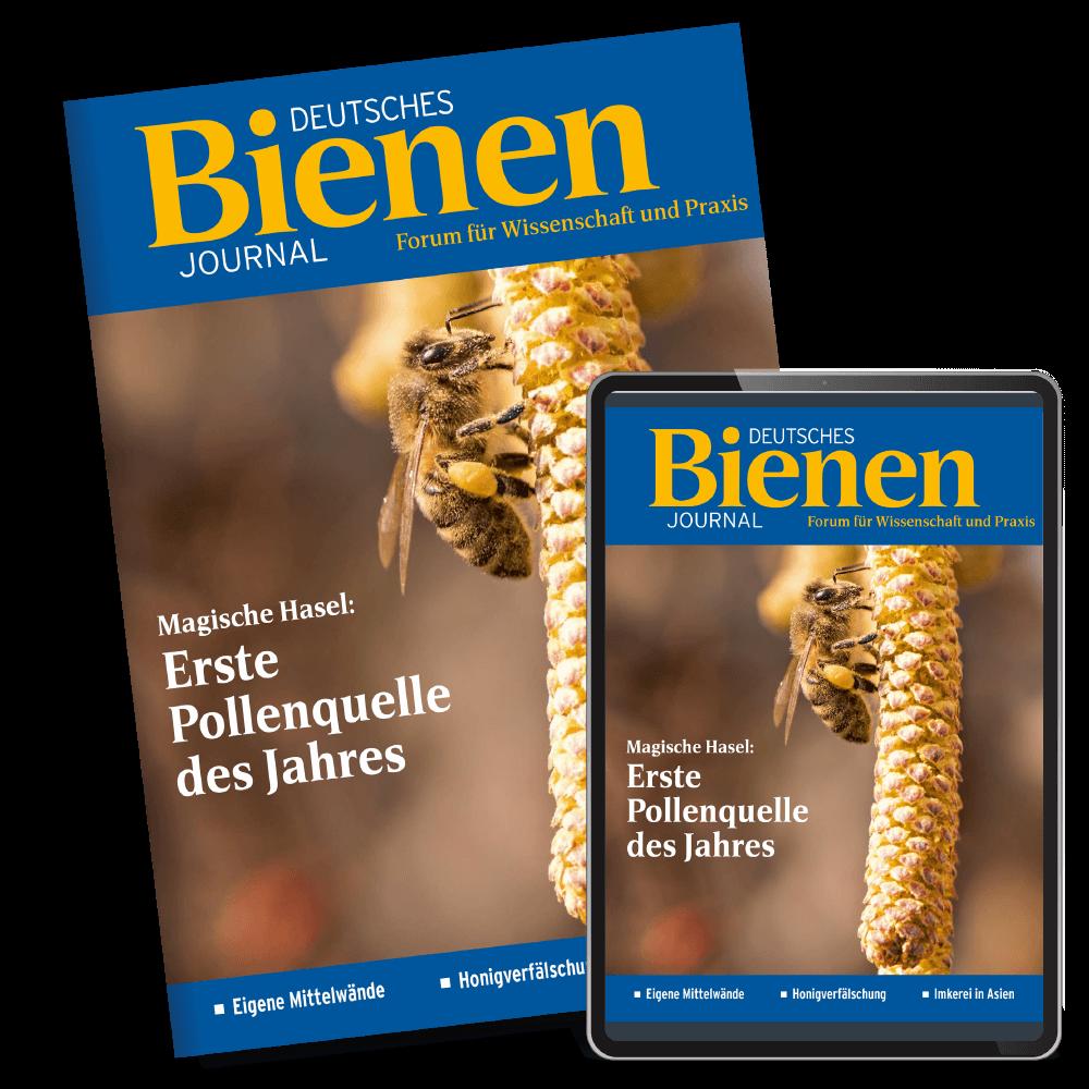 Bienen-Journal Kombiabo